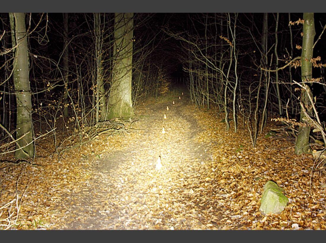 MB-0214-Lampentest-Ausleuchtung-Inton-NB-1308 (jpg)