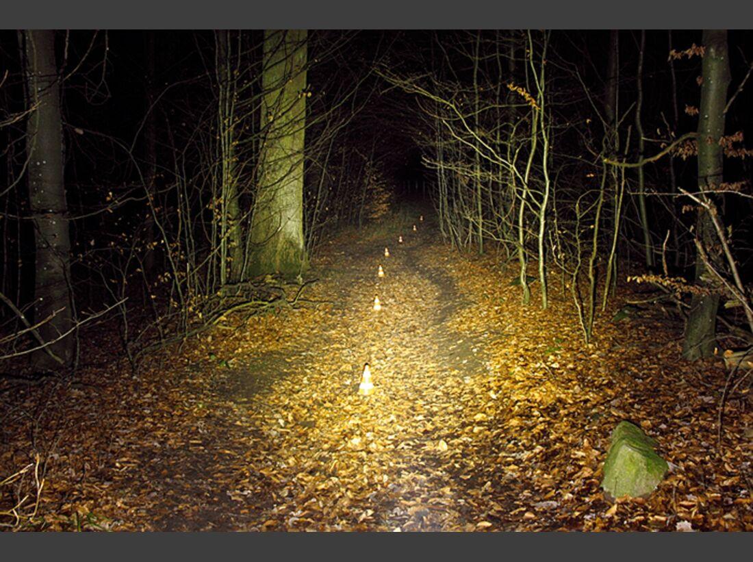 MB-0214-Lampentest-Ausleuchtung-Naturalshine-Half-Egg-NG-5 (jpg)