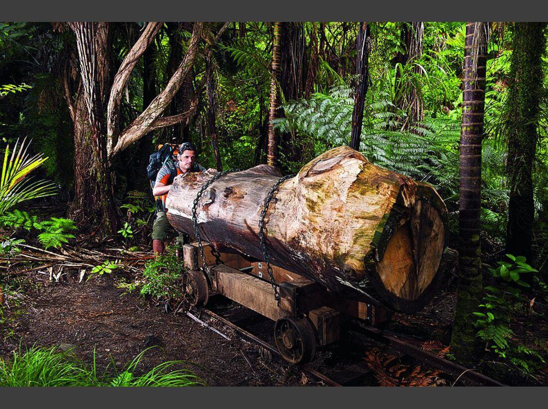 OD-0114-Neuseeland-Hillary-Trail-4 (jpg)
