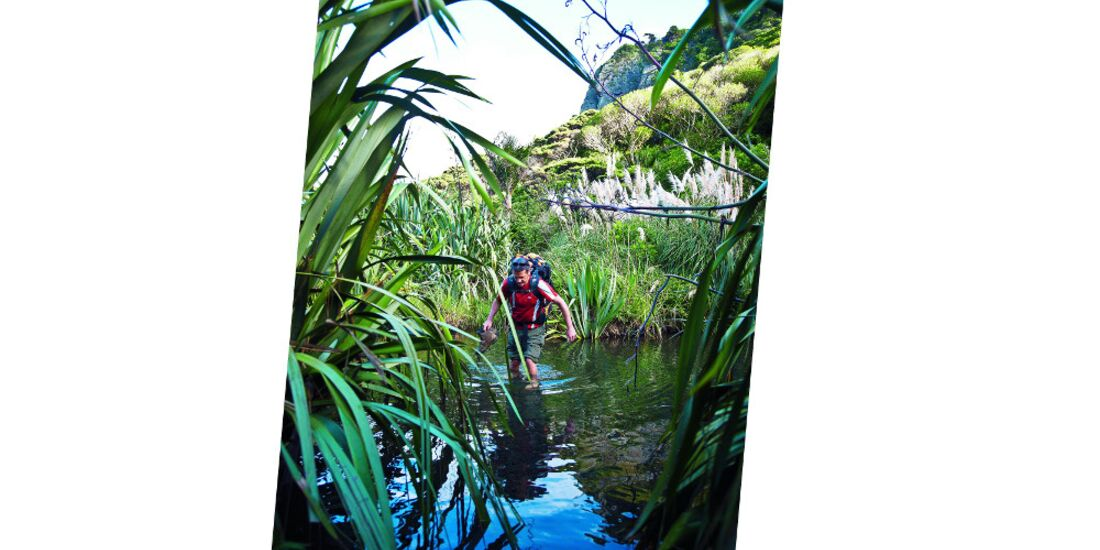 OD-0114-Neuseeland-Hillary-Trail-9 (jpg)