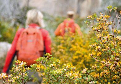 OD 0211 Australien Wilsons Promontory National Park_04_b quer kopie