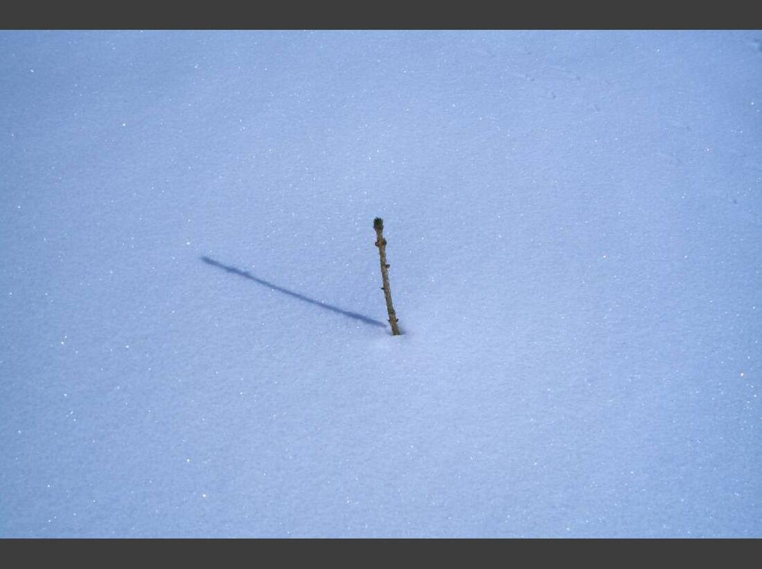 OD 0311_Winterbilder_Daniel Ranzinger
