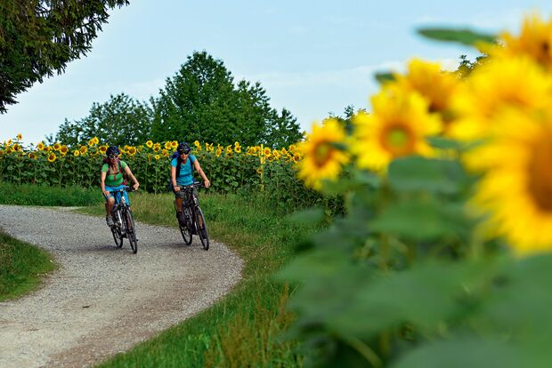 OD 0313 Radfahren Fahrrad radtouren radwanderwege frühjahr frühling