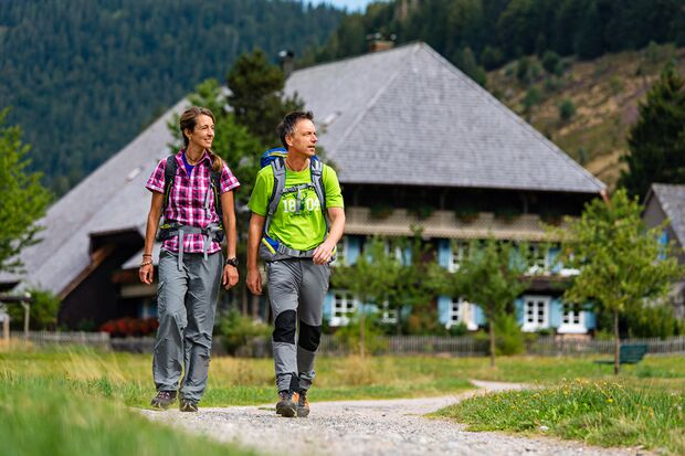 OD 0516 Schwarzwald Hütte