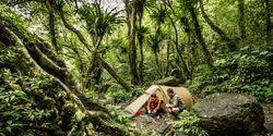 OD 0716 Fjällräven Zelt Special Dschungel Tropen Urwald
