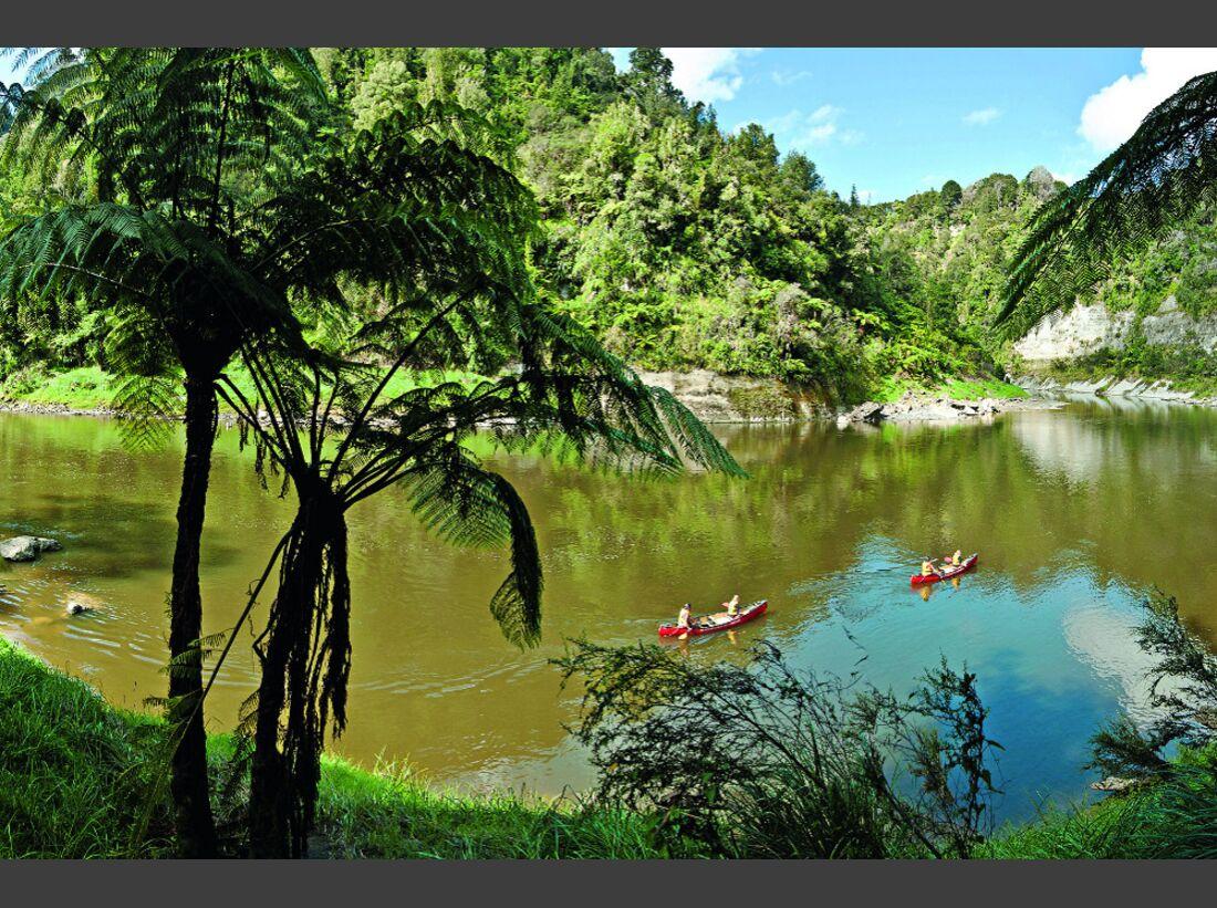 OD-1112-Reise-Neuseeland-Te Araroa-1 (jpg)