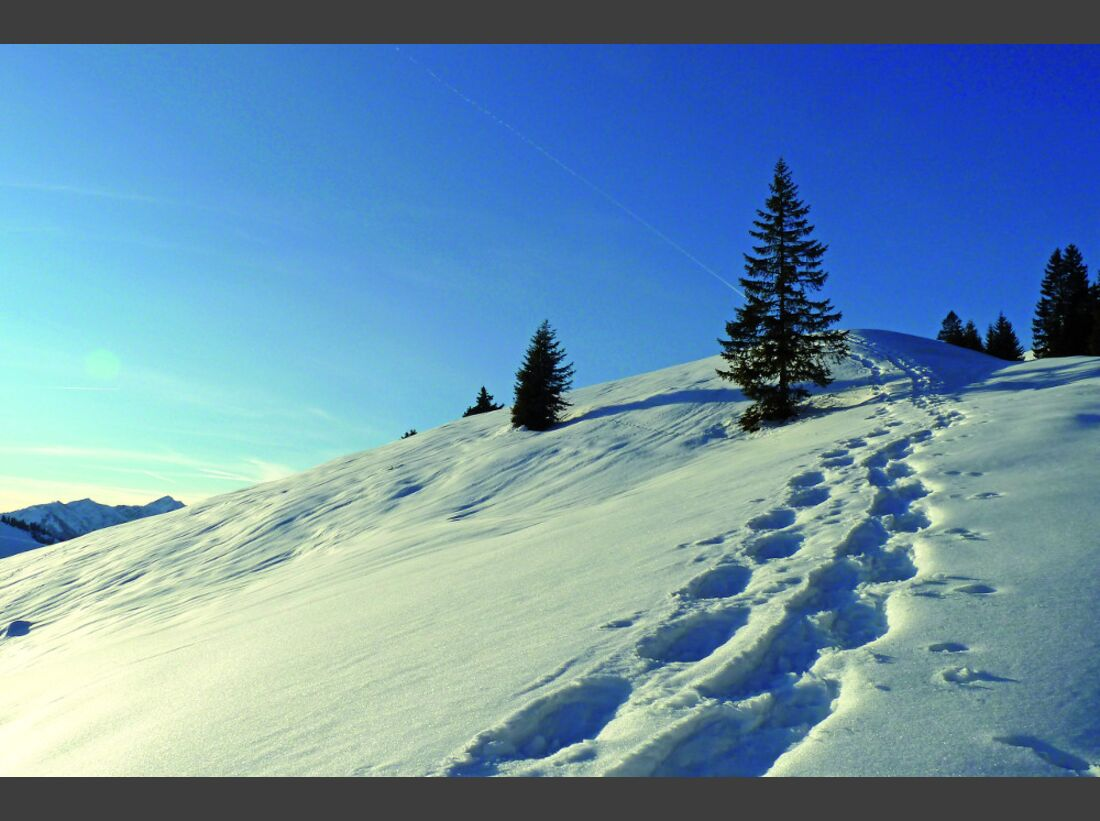 OD-2014-Bayern-Winter-Special-Oberaudorf-5 (jpg)