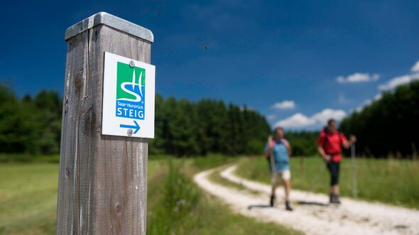 OD 2014 Fernwanderweg Saar-Hunsrueck-Steig