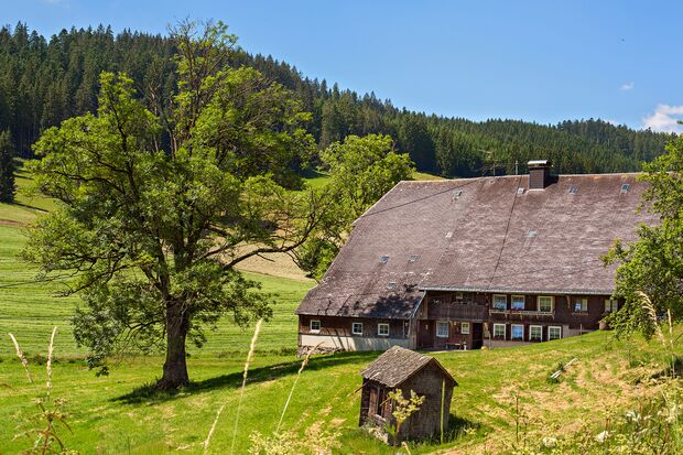 OD 2018 BW Special Hochschwarzwald Breitnau Bauernhaus Naturpark