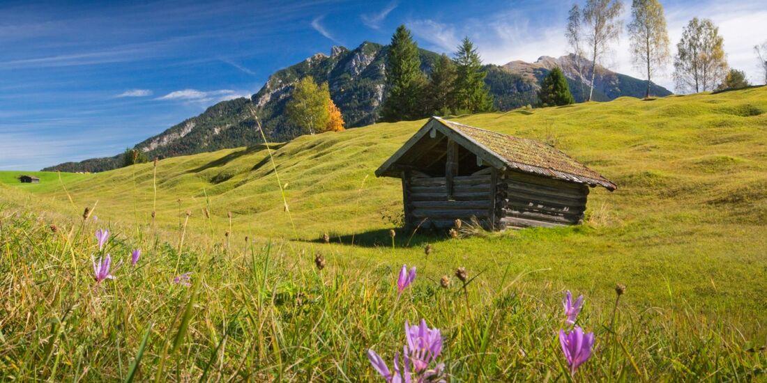 OD-2018-Bayern-Sonderheft-Buckelwiesen-Alpenwelt-Karwendel-6