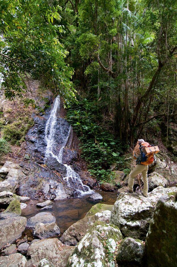 OD Sunshine Coast