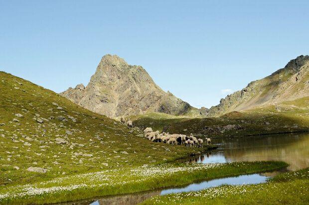 OD-Tirol-Active-Guide-Berg-Idylle-02 (jpg)