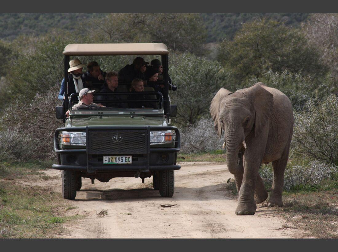 Südafrika zum Durchklicken 39