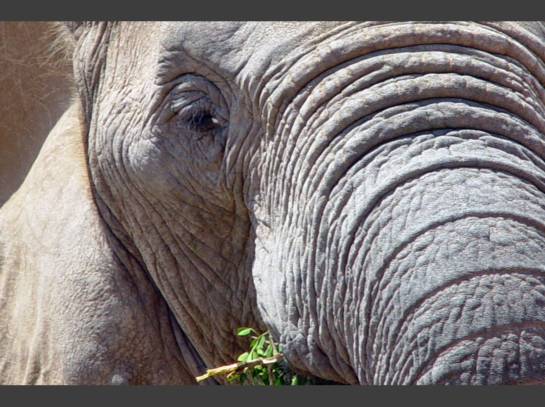 Südafrika zum Durchklicken 75
