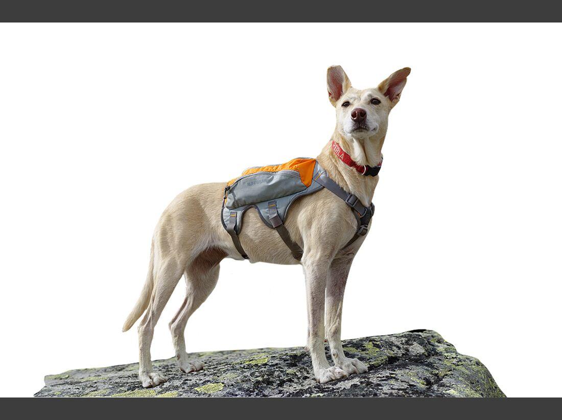 od-0118-tested-on-tour-ruffwear-hundetasche-foto-boris-gnielka (jpg)