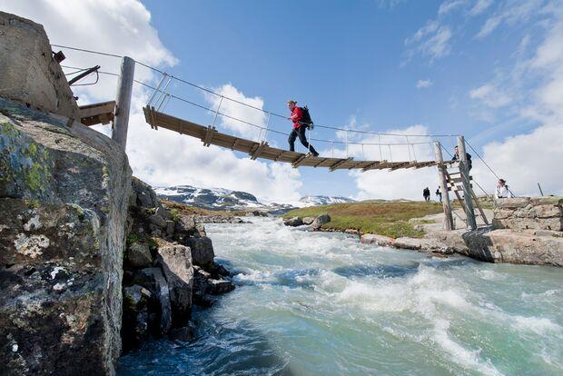 od-2015-special-norwegen-fjellnorwegen-Hardangervidda-Nasjonalpark-Thomas-Linkel (jpg)