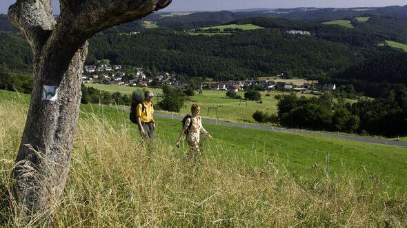 od-2016-Westerwald-sommer-malberg (jpg)