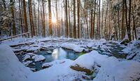 od-2016-bayern-userbilder-Peter-Neunteufel-Hoellbachtal (jpg)