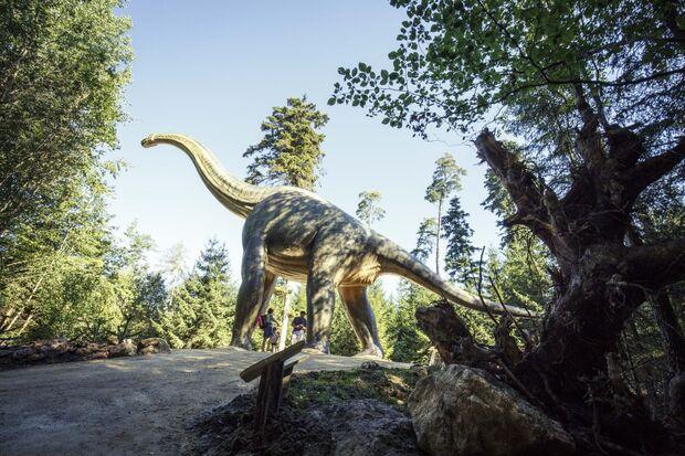 od-2019-bayern-family-npa-0367-naturpark-altmuehltal-dinosaurier-museum(jpg)