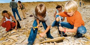 od-2019-bayern-family-npa-0367-naturpark-altmuehltal-fossiliensuche-mit-TEASER-frankentourismus-alt-hub(jpg)