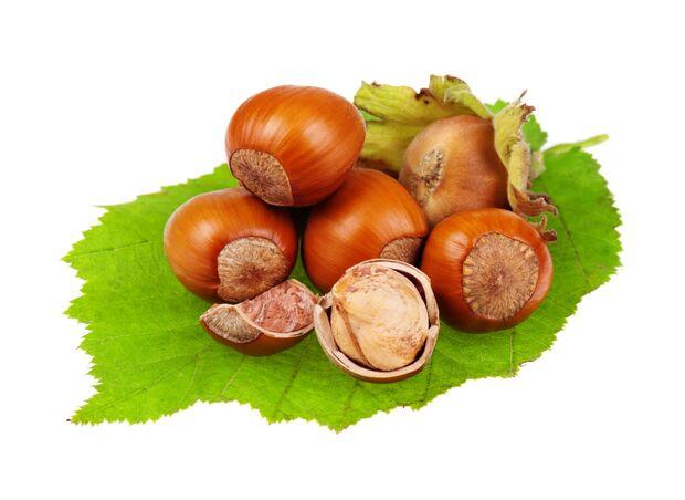 od-essbare-pflanzen-Haselnuss_COLOURBOX3767618.jpg